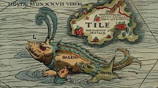 Les Romains chassaient-ils la baleine en Méditerranée il y a 2000 ans ?