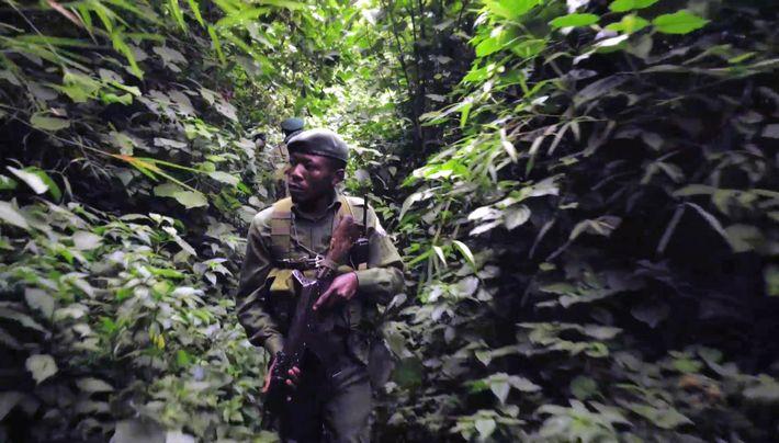 Combat pour Virungala