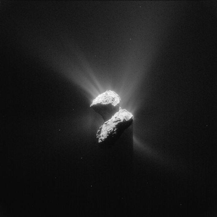 On observe bien la traînée de gaz et de poussière de la comète 67P/Tchourioumov-Guérassimenko sur cette ...