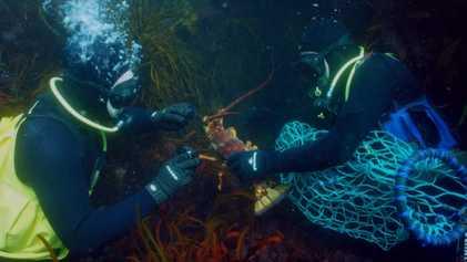 Pêcher en Tasmanie, une pratique à haut risque
