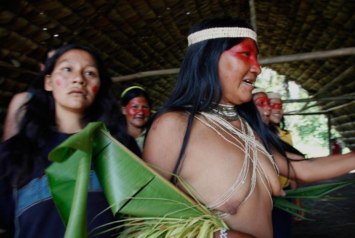 Au Mandari Panga Camp, recontre avec les Huaoranis et leur culture. Ce peuple autochtone de la ...