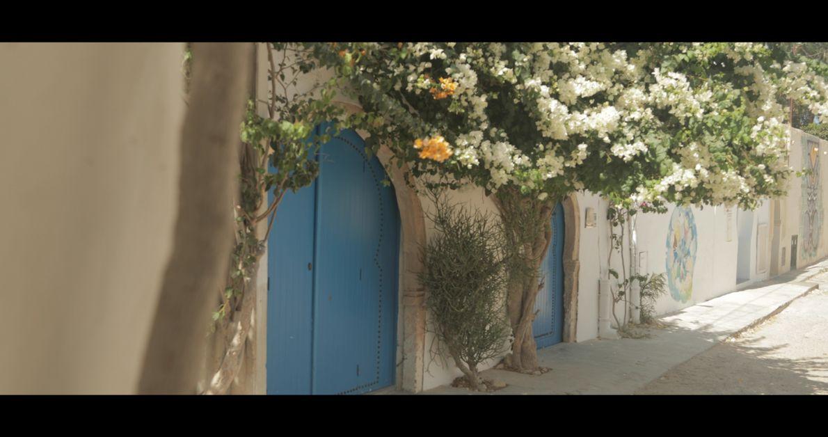 Ruelles fleuries, « Djerbahood » - Erriadh, Tunisie, 2018