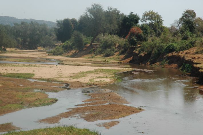 Le niveau des rivières dans le parc national Kruger sont bas mais il y a toujours ...