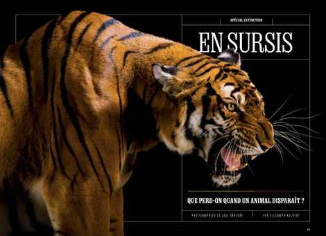 Spécial extinction : En sursis