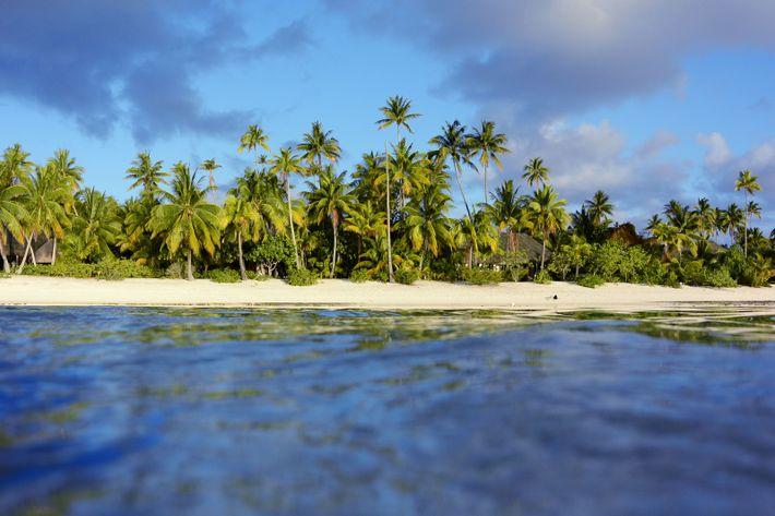 Tetiaroa est un atoll privé qui fait partie des îles du Vent de l'archipel de la ...