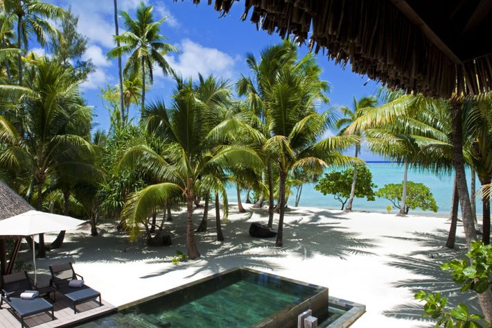 Les 35 villas privées avec piscine du Brando donnent toutes sur la plage des Tortues ou ...
