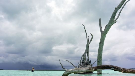 Auparavant connue sous le nom de « Bassin de la reine », cette partie de l'atoll ...