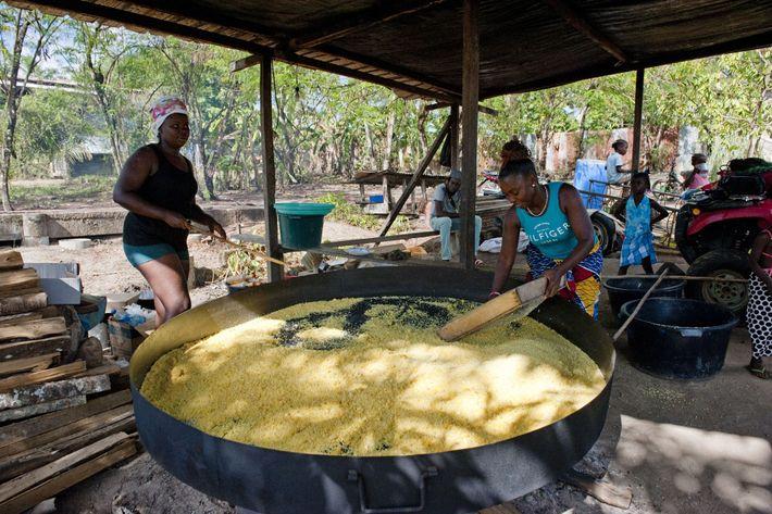 Pour faire du couac, il faut éplucher les tubercules de manioc, puis les réduire en pâte, ...