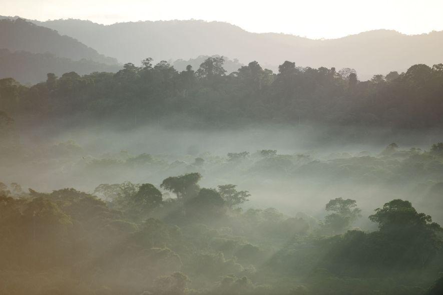 Il est 5h30, le soleil se lève et la brume se dissipe sur le bourg de ...