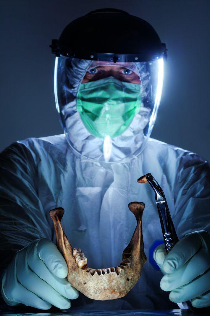 Dans des laboratoires tels que celui-ci, à Iéna, en Allemagne, l'ADN des dents et des ossements ...