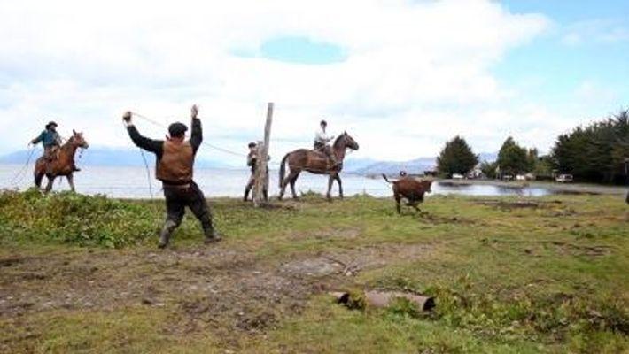 Les gauchos de Patagonie