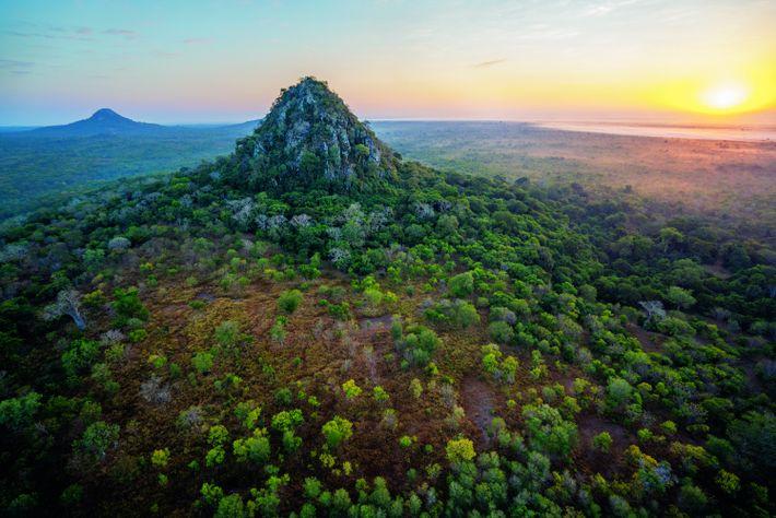 Les 4 000 km2 du parc national de Gorongosa, à l'extrémité sud de la vallée du ...