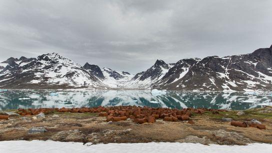 Greenlands_WWIIBaseRemnants_1