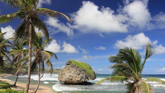 Bathsheba Beach, sur la côte de la Barbade, est un havre de nature sauvage prisé des ...