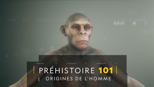 COMPRENDRE : Les origines de l'Homme