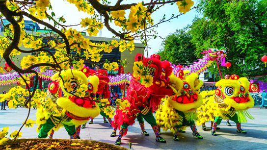 Le Têt, le Nouvel An vietnamien, est la fête la plus importante de l'année. Un événement ...