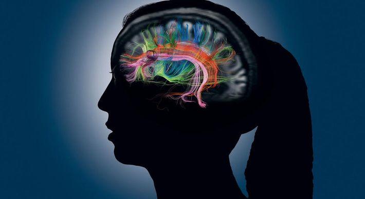 Lorsque nous accédons à la mémoire d'un individu, de nombreuses parties de notre cerveau se parlent ...