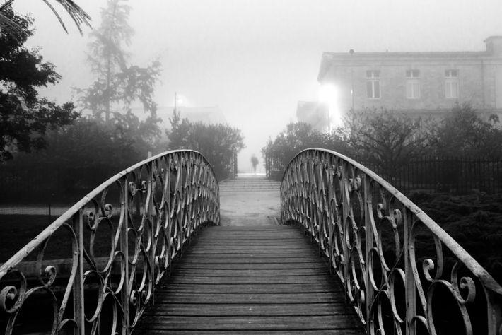 """Talence (Gironde), photo de Mériadec Le Pabic. """"J'ai attendu l'instant décisif, celui qui apporterait de la ..."""