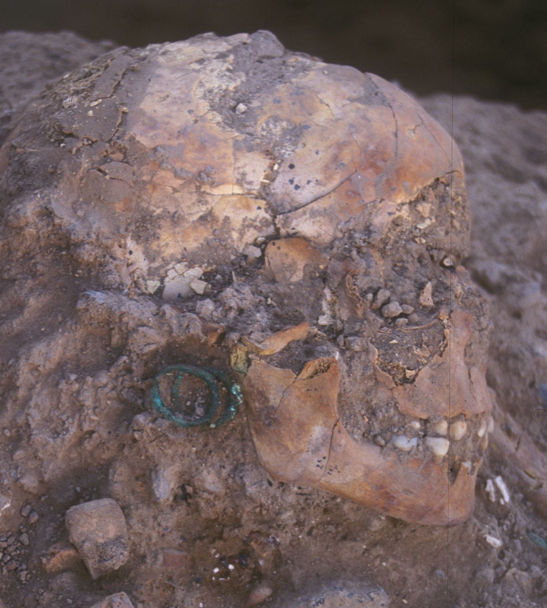 Le squelette de 3 800 ans d'une jeune aristocrate parée de bijoux en bronze et de ...