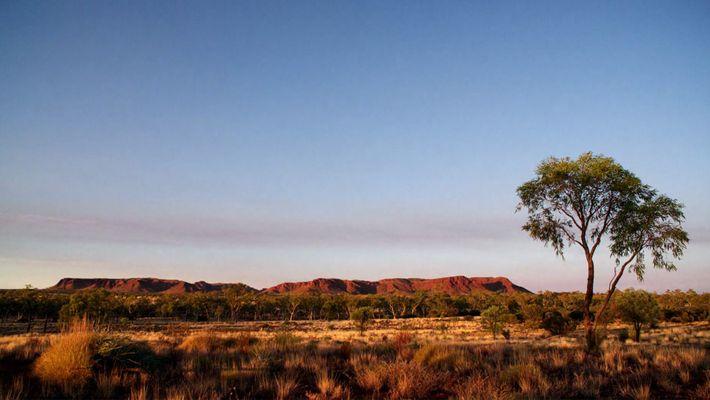 La création pour les aborigènes