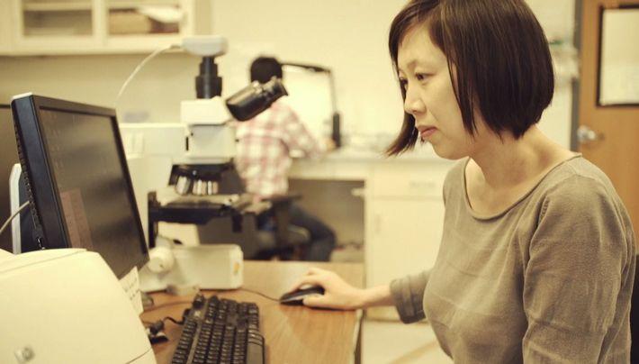 Les nouveaux pionniers: Xiaolin Zheng