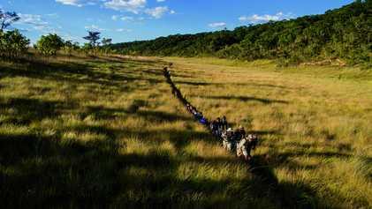 La mission National Geographic pour sauver le delta de l'Okavango