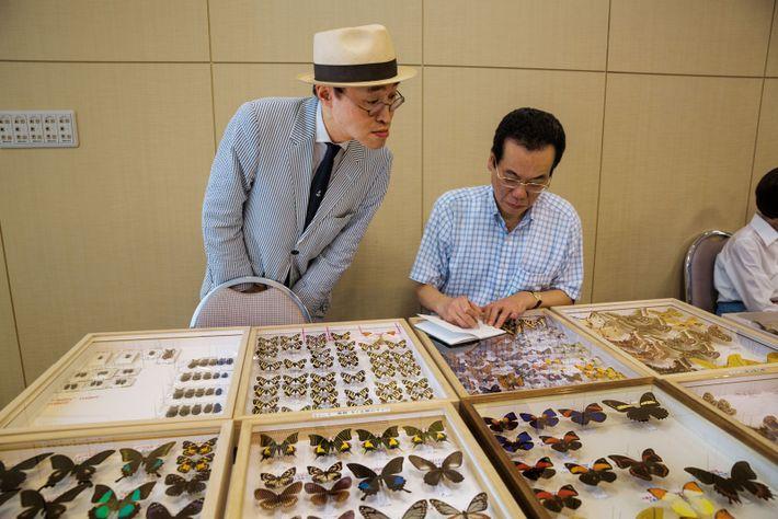 Tous les ans, à Tokyo, le Salon des insectes (qui ne possède pas de site Internet) ...