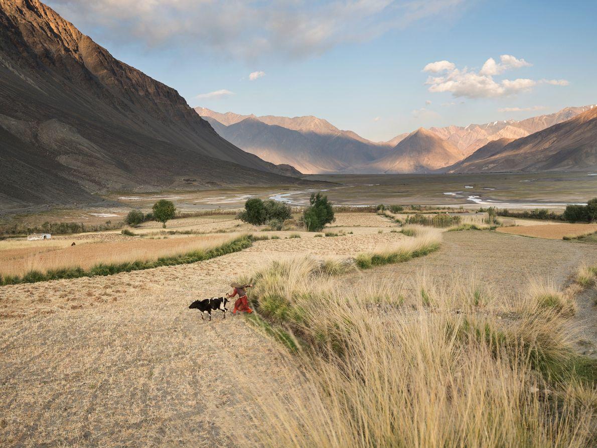 Près de la pointe orientale du corridor du Wakhan, les routes se réduisent à des sentiers. ...
