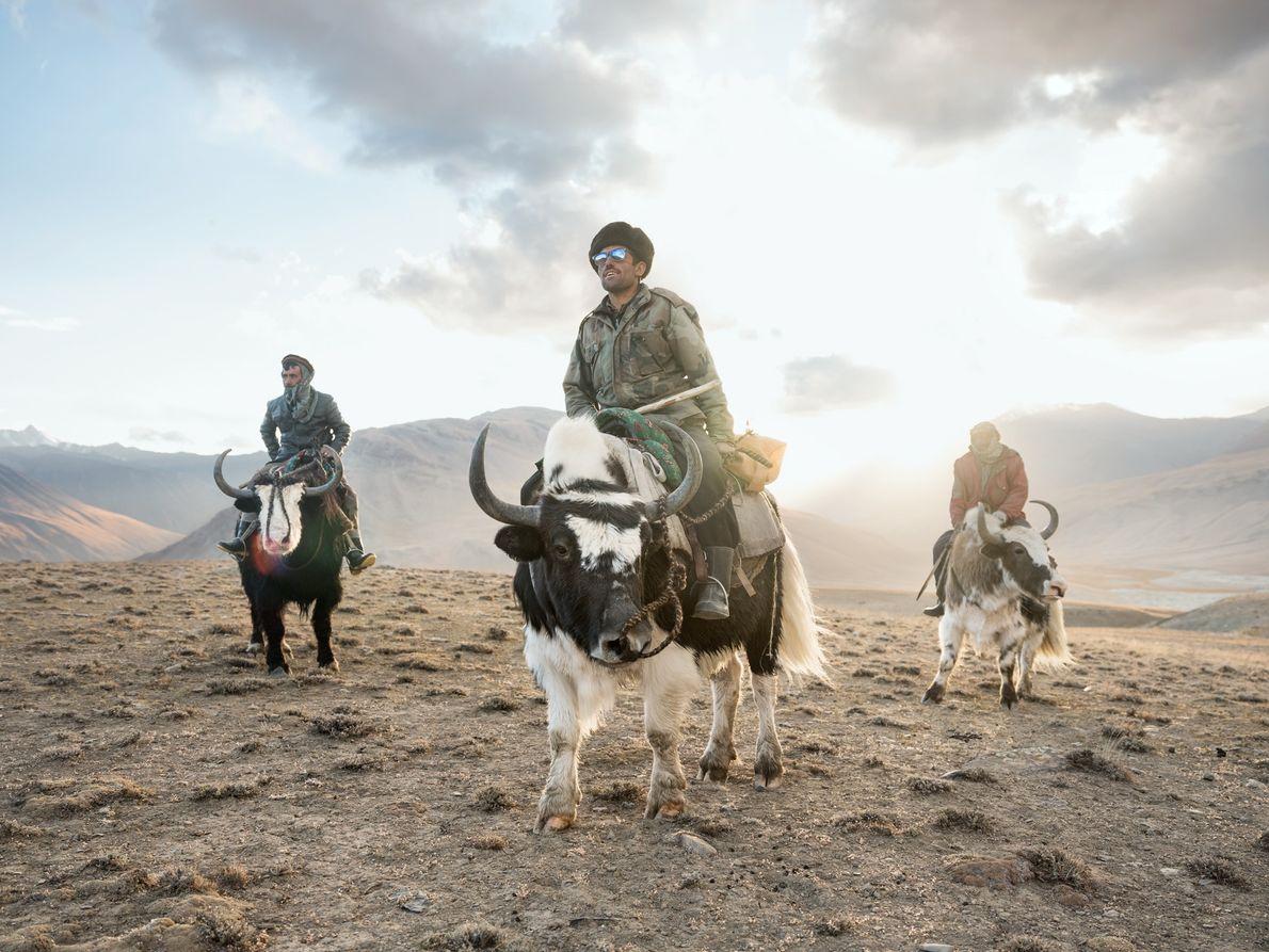 Sidol (à gauche), Jumagul (au centre) et Assan Khan rentrent sur leurs yaks après avoir observé ...