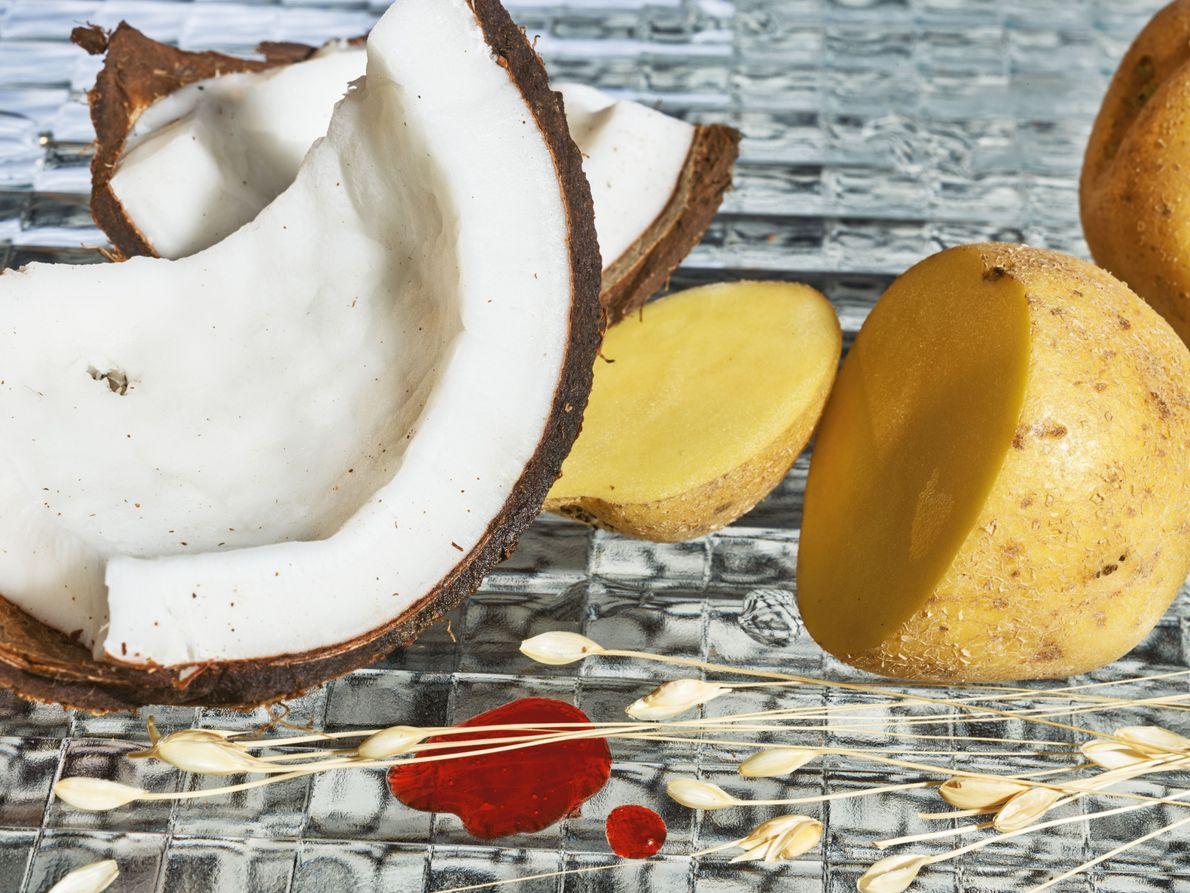 Des protéines de blé et de pomme de terre, ainsi que de l'huile de noix de ...
