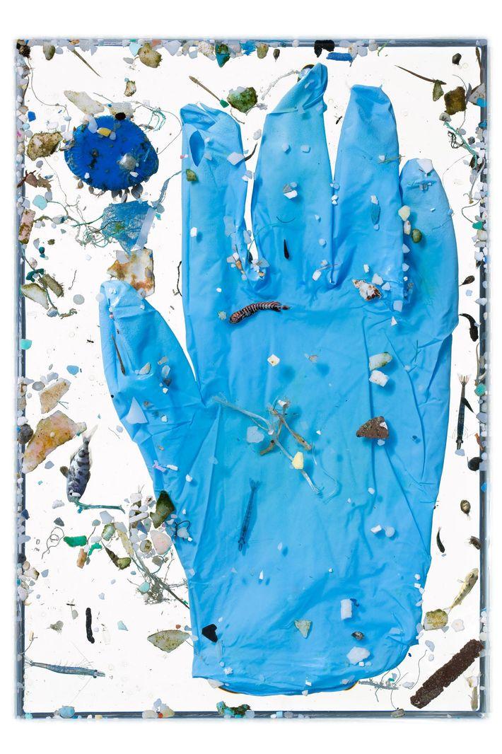 Dans l'océan, les objets en plastique se désagrègent en particules infimes – les microplastiques – sous ...