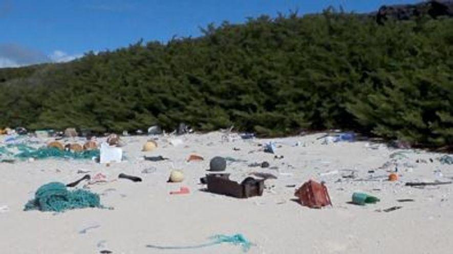 38 millions de déchets plastiques recouvrent cette île déserte