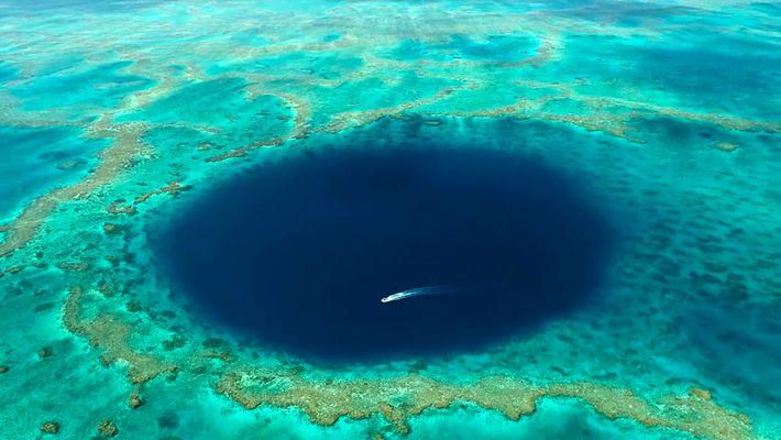Le trou bleu de la barrière de corail filmé pour la première fois