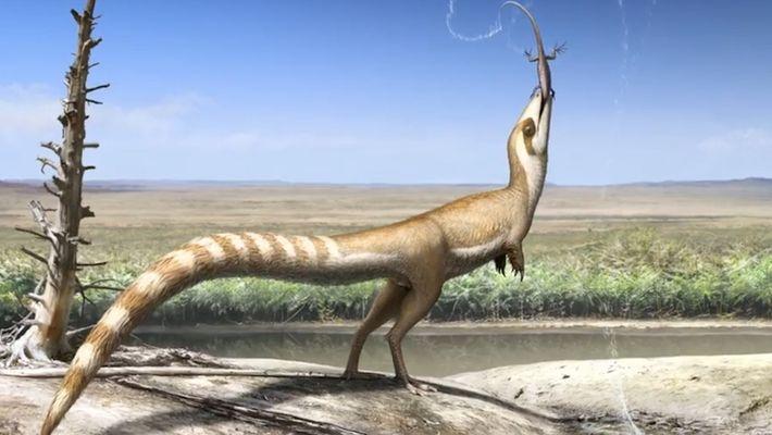 Ce dinosaure aurait ressemblé à un raton-laveur