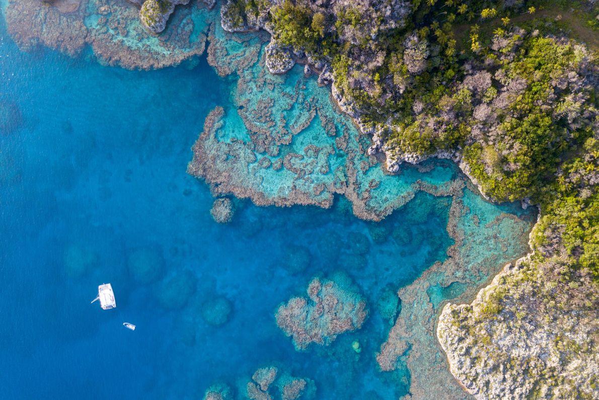 Les plongeurs devaient au départ explorer les fonds ceinturant la petite île déserte de Vauvilliers, au ...