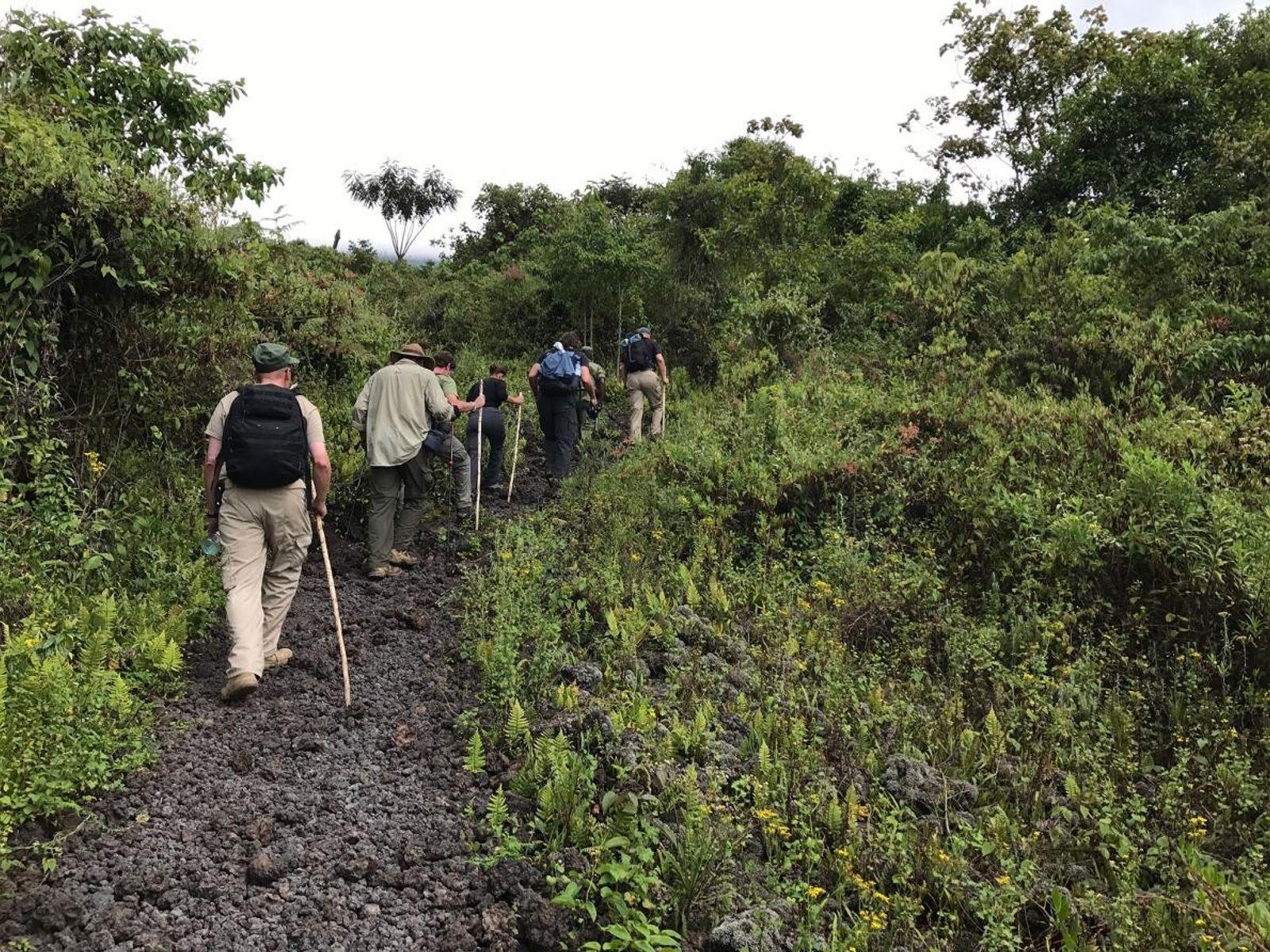 Des chemins, faits de roches volcaniques propices aux entorses, formés par d'anciennes éruptions mènent au sommet ...