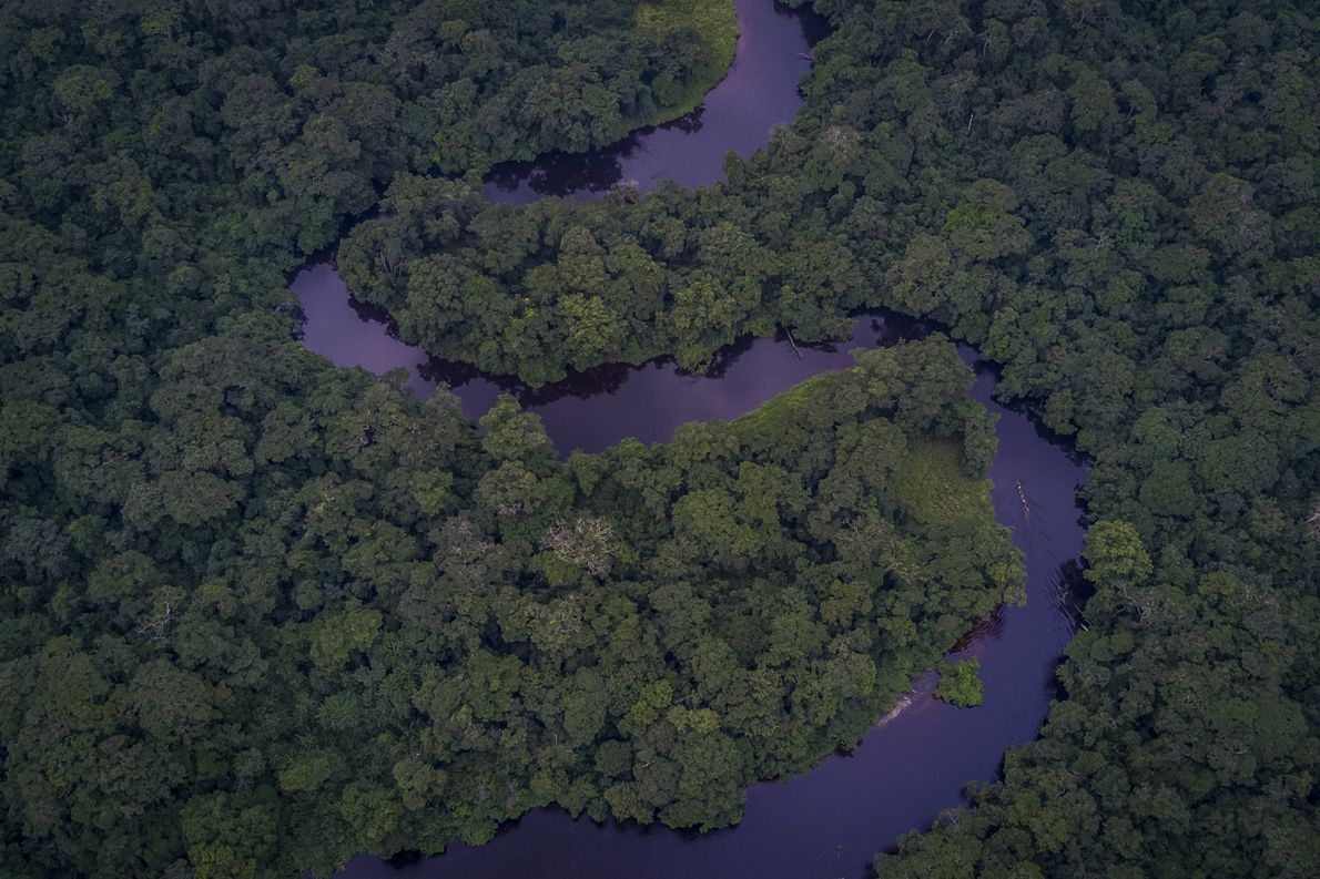 À peine visible, la pirogue des rangers descend la rivière Luile, dans le bloc Nord du ...