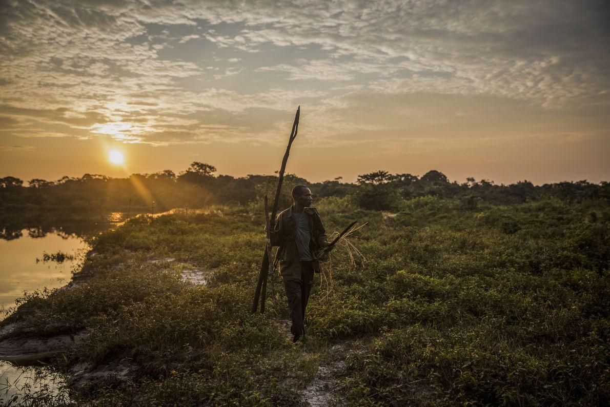"""Un ranger cherche des traces d'éléphants de forêt au bai de Sukisa. Les """"bais"""" sont des ..."""