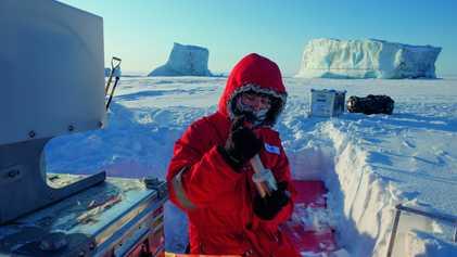 Près de 200 000 virus peupleraient l'océan Arctique