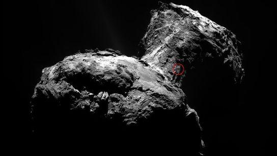 Image de la comète Tchouri prise par la sonde Rosetta.