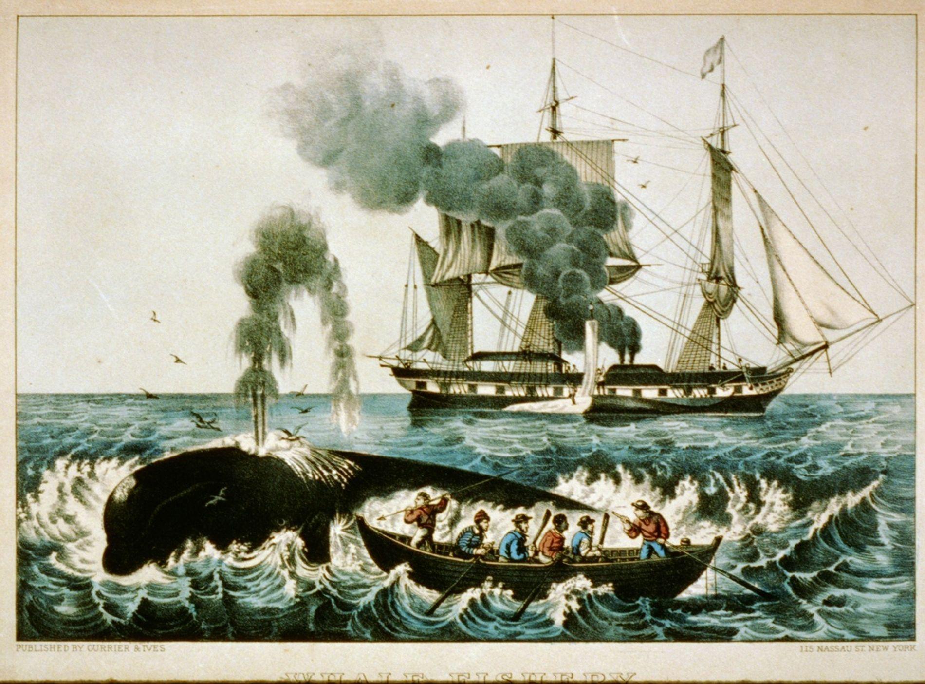 Un baleinier de la Nouvelle-Angleterre peint entre 1856 et 1907.