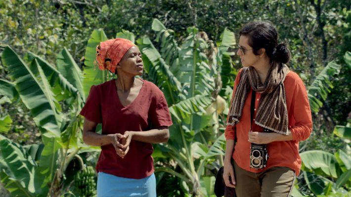 Histoires de café : le retour du café au Zimbabwe