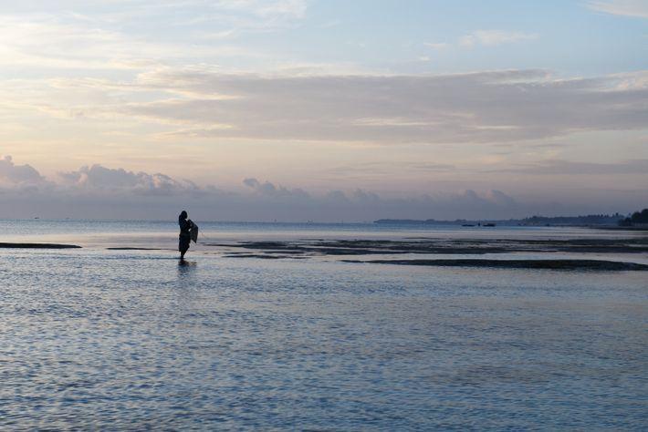 L'archipel est soumis aux marées qui varient considérablement selon la côte sur laquelle on se trouve. ...