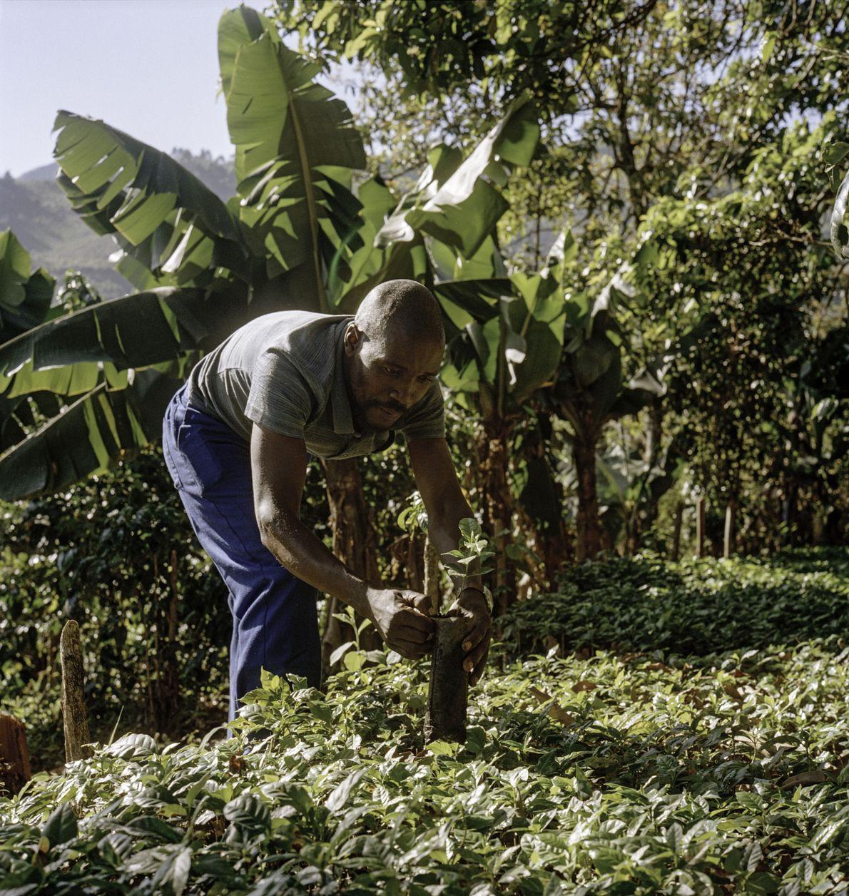 Zachariah a constaté un grand changement dans les connaissances des agriculteurs en matière de pratiques agronomiques ...