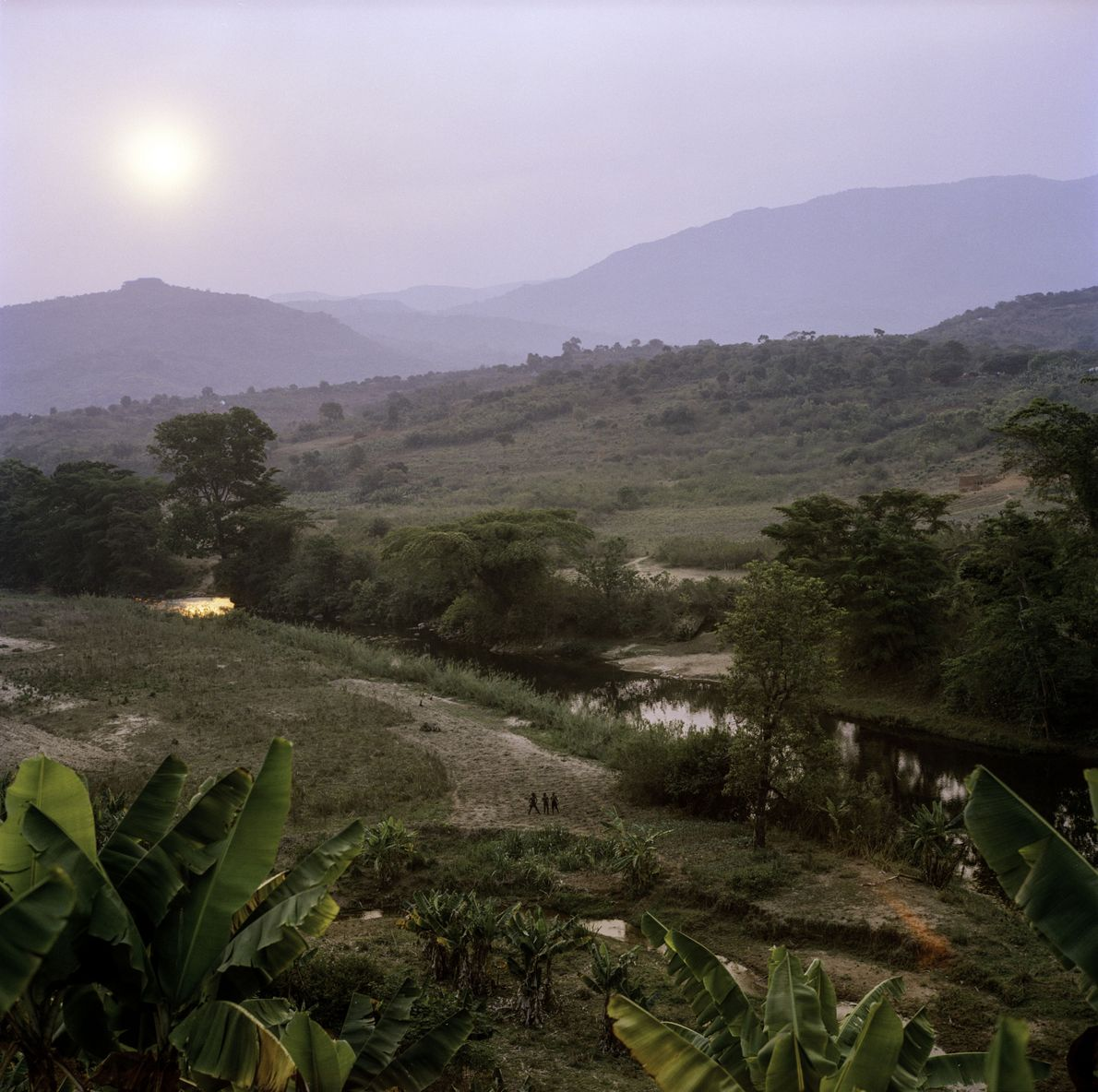 Avec des températures fraîches, un bon taux de précipitations et un sol riche, les vallées luxuriantes ...