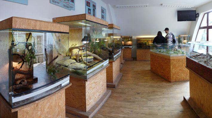 Terrariums au zoo Ohrada, en République Tchèque