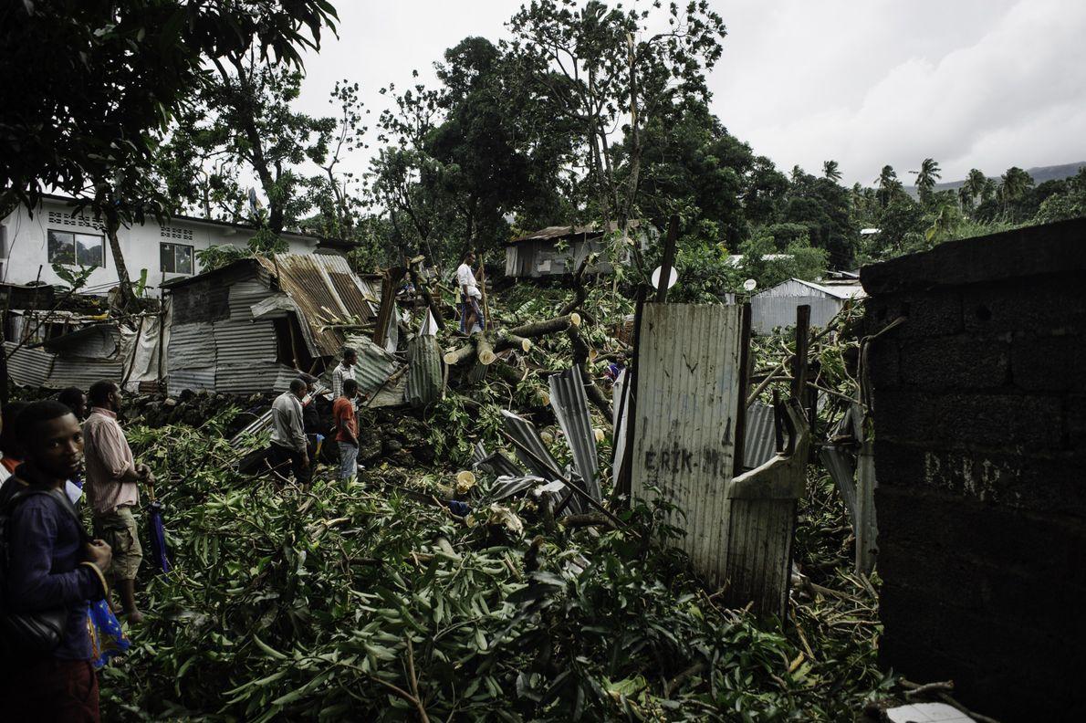 Les maisons de tôle n'ont pas résisté aux chutes de grands arbres. Dans le quartier de ...