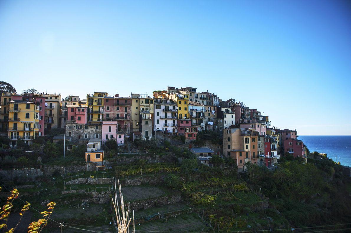 Corniglia, 250 habitants, bénéficie d'une vue imprenable sur la Méditerranée. C'est l'unique village des Cinque Terre ...