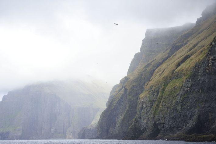 Vestmannabjørgini (Vestmanna bird cliffs), îles Féroé.