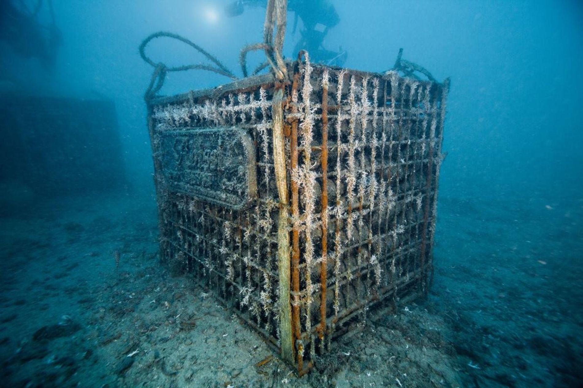 Les cages de vin mousseux du fabricant italien Bisson sont conservées en Méditerranée pendant 18 mois, ...